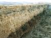 1984-11-01-cp-11-harbaqa-dam-wall