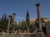 shahba-hexastyle-temple-2883